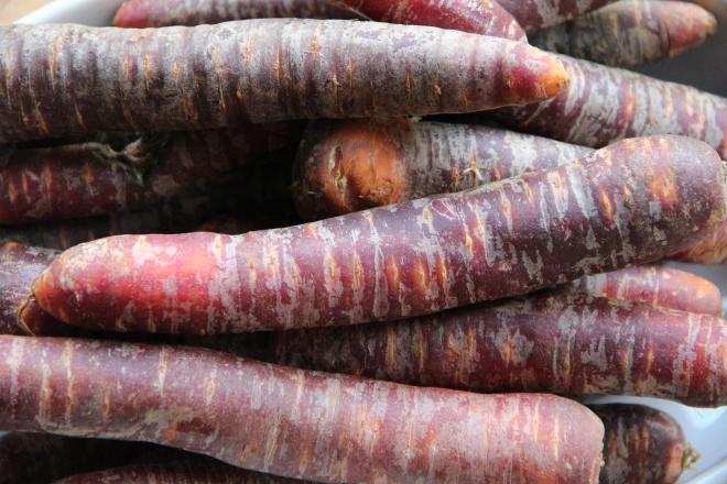 Paarse wortelen
